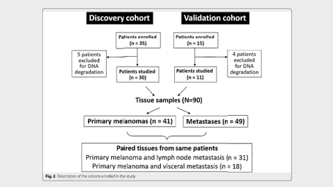 Mutational concordance between primary and metastatic melanoma